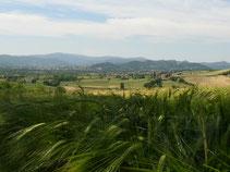 Blick vom Weg nach Montone zurück ins Tibertal auf den gerade überquerten Höhenrücken