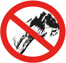 Keine Gewalt an der Schule  Bild:spa