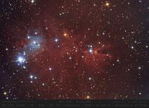 NGC 2264  ,  Konus Nebel