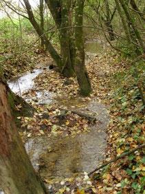 Ruisseau du Laragou