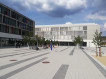 Neubau Gesamtschule Erwin-Fischer Greifswald