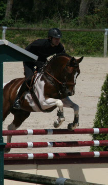 Rougetblanc, CC Hunter 5ans