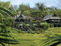 You will reside in beautiful luxury resorts in Chiang Mai.
