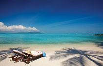Koh Samui bietet alles für einen tollen Urlaub in Thailand.