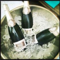 Drei Weinflaschen in einem mit Eis gefüllten Eimer