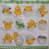 Funny Chickens ペーパーナプキン