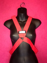 Red Elastic Harness
