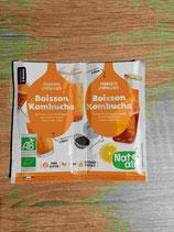 Ferments Boisson Kombucha Bio