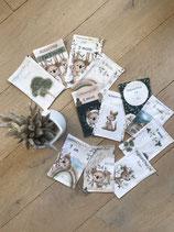 Cartes étapes ma première année - collection Eucalyptus