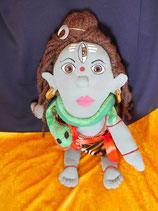 Shiva (13)