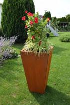 Pflanzenkasten EASY K900