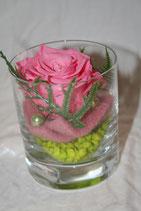 Rose im Glas (echt)