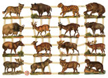 CROMOS ANIMALES VARIOS 7277