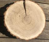 Baumscheibe BOLZANO 38-42 cm, h=6 cm