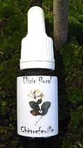 """JS - Elixir floral """" Chevrefeuille"""" (Honeysuckle) 10ml"""