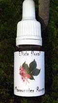 "JS - Elixir floral ""Marronnier rouge"" (Red chesnut) 10ml"