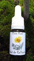 """JS - Elixir floral """"pavot de californie"""" 10ml"""