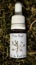 """JS - Elixir floral """"Etoile de Bethléem"""" (Star of bethleem) 10ml"""