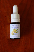 "JS - Elixir floral ""Millepertuis"" 10ml"