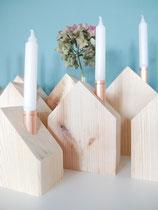 Holzhaus mit Reagenzglas