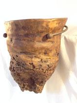 Organic Plant Pot