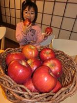 竹嶋有機農園のジョナゴールド          B,C級品バラ入りは、来年1月の発送です。