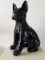 Hond zwart