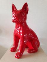 Hond rood