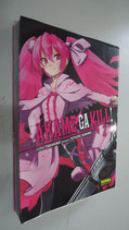 MANGA AKAME GA KILL VOL 2