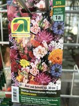 Samen Sommerblumen- Mischung niedrig