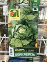 Samen Kopfsalat