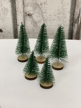 Tannenbäume