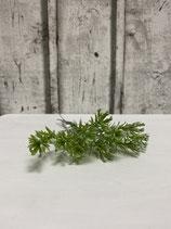 Mini Zweig graugrün mit Beerenansatz