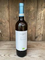 Le Spinee Delle Venezie Pinot Grigio vegan 750ml