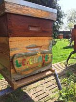 Parrainage d'une ruche