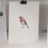 Postkarte - Rotkehlchen