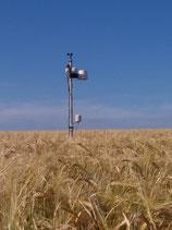 NEXT Wetterstation Pro 25 Sensoren