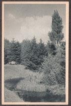 3210.   (W-4902)    Bad Salzuflen   -Einsamer Winkel im Kurpark-   (PK-00252)