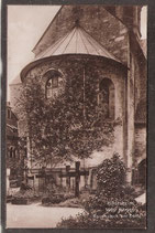 31134   (W-3200)   Hildesheim   -1000 jähriger Rosenstock am Dom-  (PK-00040)