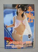 シーナ茜 写真集 DVDあり ロリエロエンジェル 会田我路