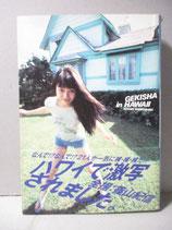 B級) 写真集 GEKISHA in HAWAII  篠山紀信