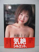 秋野圭子 写真集 気絶シルエット。