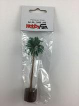 Palme 10cm