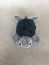 Schildkröte Leco