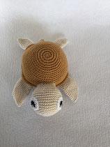 SChildkröte  Aly