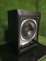 """Tannoy Ascot T-145   10"""" Dual Concentric System"""