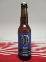 Bière artisanale IPA Gaua