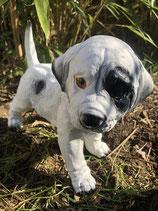 RIG500 Dalmatiner Welpe Hund Figur