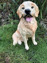 RIPS103 Golden Retriver Hund Figur
