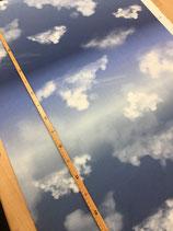 Cloudy Sky by lycklig design *blau*